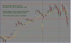 download niceGuy ridiculous 7 pips trading system