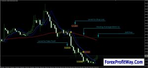download rubicon indicator and trading strategy for mt4