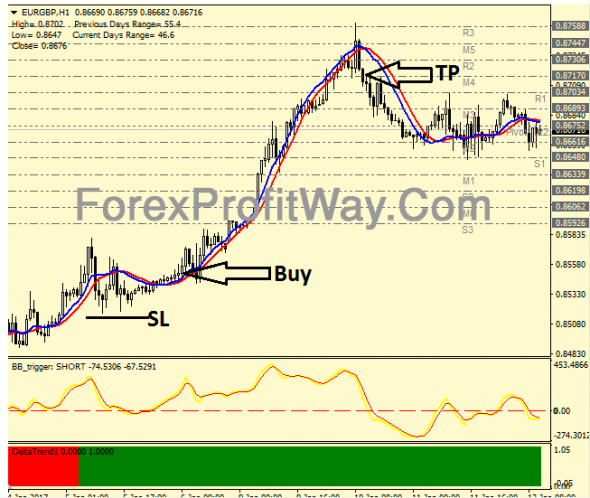 Mt forex trading