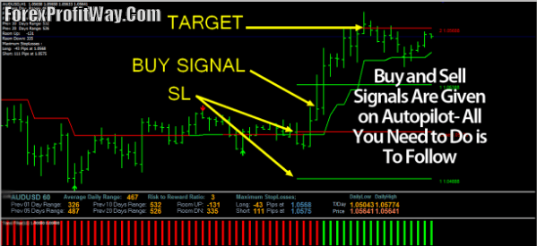 The ultimate forex trading system