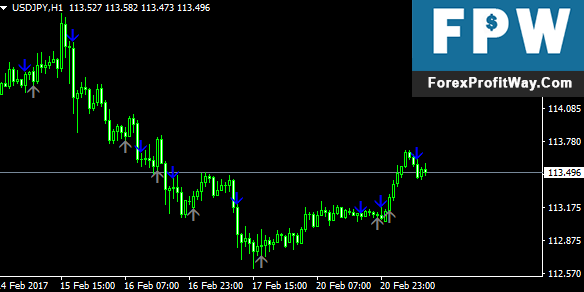 Download Solomon Forex Indicator For Mt4
