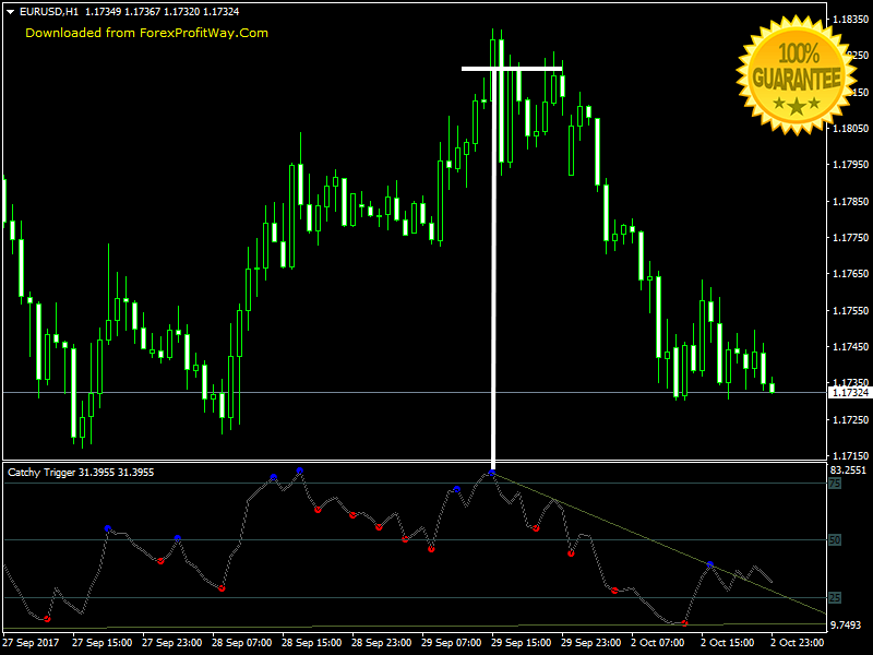 Binary Options Trading Forex Indicator Mt4