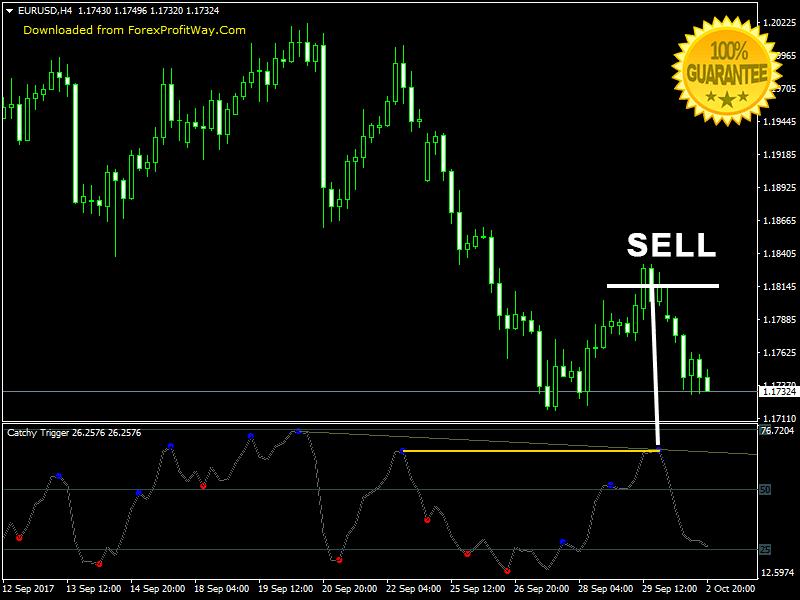 Binary Options Trading Forex Indicator